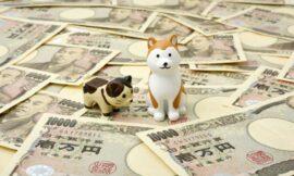 找不懂得賺錢的人借貸,借錢生錢創造雙贏局面